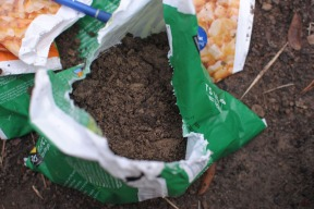 A single full soil sample, bagged and ready.