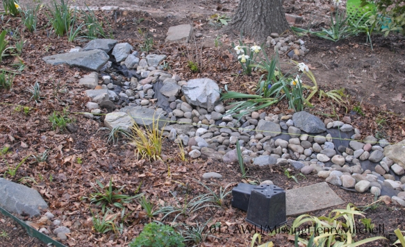 extended streambed top
