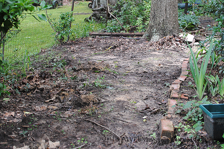 new pathway garden starting site
