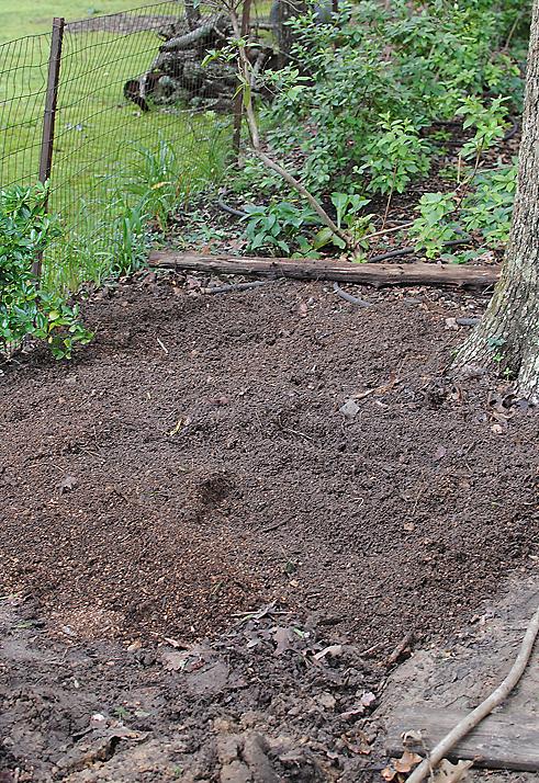 path garden till