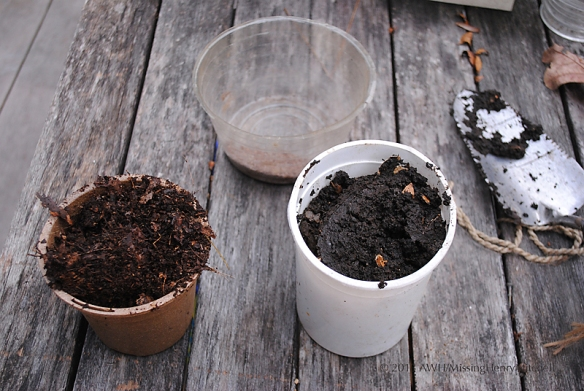 Homemade compost (left) and worm castings (right).