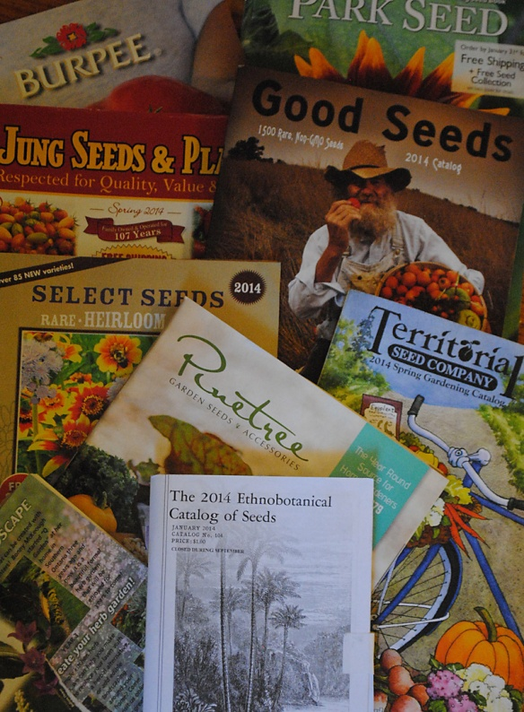 2014 catalogues, first harvest