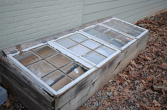 cold frame put to bed