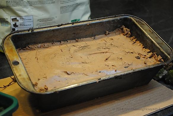 not gelato