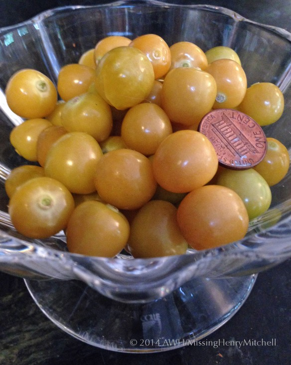 ground cherries physalis fruits in bowl